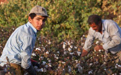 Presentazione del Bando per il contrasto dello sfruttamento dei lavoratori stranieri